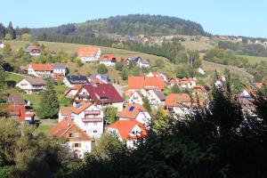 Haus Klumpp, Appartamenti  Baiersbronn - big - 28