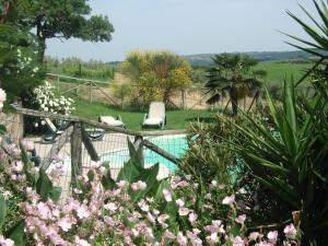 Agriturismo QuartoPodere, Bauernhöfe  Magliano in Toscana - big - 34