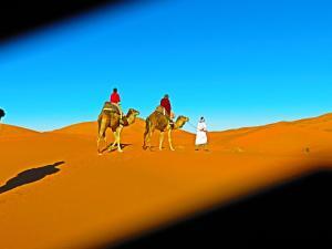 Riad Desert Camel, Hotels  Merzouga - big - 49
