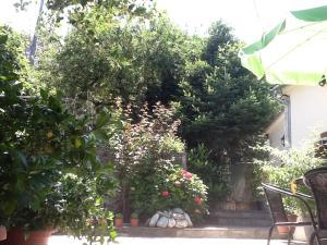 Guesthouse Kleopatra's, Vendégházak  Cangaráda - big - 35