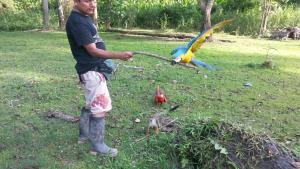 Avatar Amazon Lodge, Chaty  Santa Teresa - big - 51