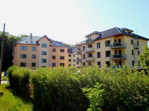 Gespensterwald - Ferienwohnung 24