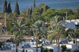 A Picture of Kinneret Village
