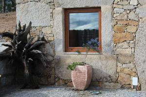 Casa de Campo Quinta do Perelhão