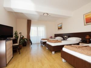 Hotel Orka - фото 21
