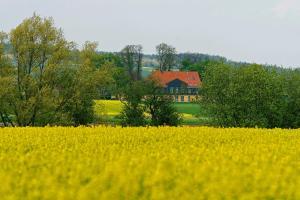 obrázek - Landhaus Heidekrug