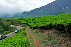 Montana Resorts, Hotels  Munnar - big - 16