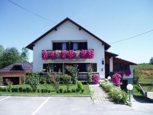 Guest House Boric