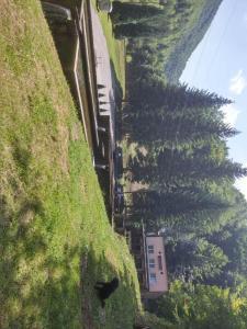 Ribnjak - фото 11