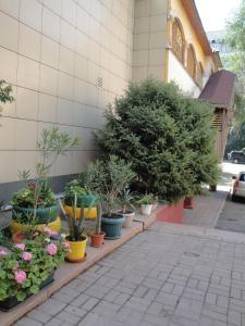 Гостиница Беркана - фото 3