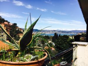Appartamento Cristina, Ferienwohnungen  Portovenere - big - 1