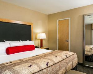 Cambria Hotel & Suites - Fort Collins