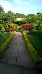 Longonot 43 - Lodge, Chaty v prírode  Lilongwe - big - 25