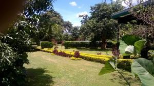 Longonot 43 - Lodge, Chaty v prírode  Lilongwe - big - 51