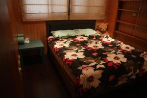 Dreamer Hostel