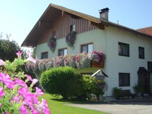 Gästehaus Jedinger