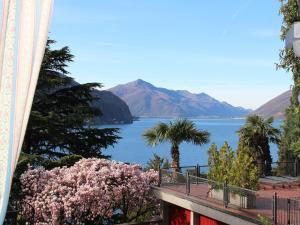 Barony Olive - Apartment - Lugano