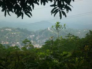 Hill Cottage, Priváty  Kandy - big - 32