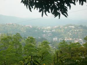 Hill Cottage, Priváty  Kandy - big - 33