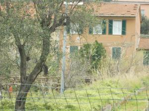 Appartamento Maria Grazia, Apartmány  Portovenere - big - 38