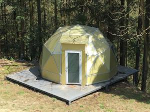 Tree Star Camp