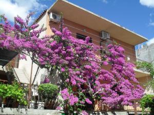Apartments Katica 3465, Apartments  Makarska - big - 21