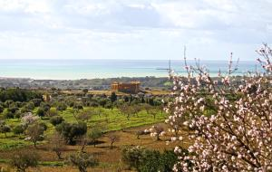 La Passeggiata di Girgenti, Bed and Breakfasts  Agrigento - big - 39