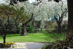 Casa Simonetti, Bed and Breakfasts  Torre del Lago Puccini - big - 27