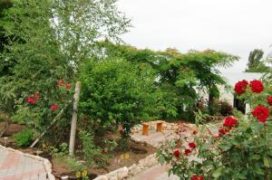 Guest House GorodOk, Bed and breakfasts  Chornomorskoe - big - 118