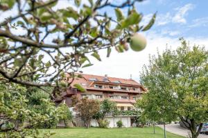Hotel-Restaurant Vinothek Lamm, Hotels  Bad Herrenalb - big - 38