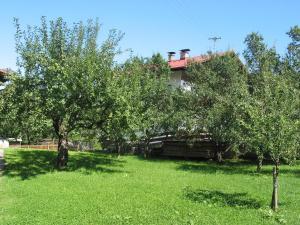 Haus Seiwald, Apartmanok  Niederau - big - 49