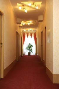 Отель Доминик - фото 17