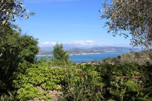 Casa della Cornice, Case vacanze  La Spezia - big - 4