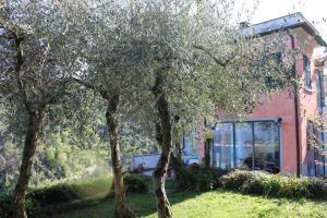 Casa della Cornice, Case vacanze  La Spezia - big - 20