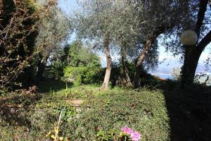 Casa della Cornice, Case vacanze  La Spezia - big - 18