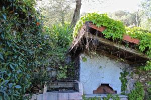 Casa della Cornice, Case vacanze  La Spezia - big - 22