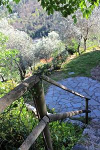 Casa della Cornice, Case vacanze  La Spezia - big - 69