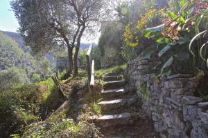 Casa della Cornice, Case vacanze  La Spezia - big - 37
