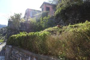 Casa della Cornice, Case vacanze  La Spezia - big - 35