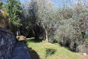 Casa della Cornice, Case vacanze  La Spezia - big - 34