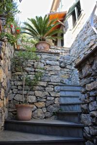 Casa della Cornice, Case vacanze  La Spezia - big - 28