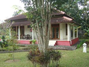 Guesthouse Rumah Senang, Гостевые дома  Kalibaru - big - 54
