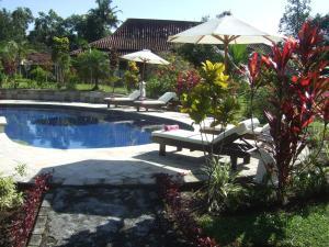 Guesthouse Rumah Senang, Гостевые дома  Kalibaru - big - 63