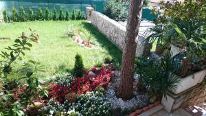 Villa Roses Apartments & Wellness, Apartmány  Ičići - big - 151