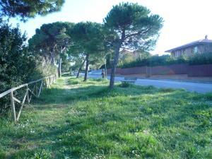 Appartamento Belvedere - Apartment - Porto Sant'Elpidio