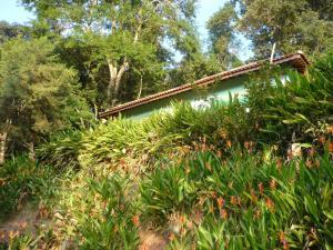 Eco Pousada Figueira Grande, Гостевые дома  Piracaia - big - 16