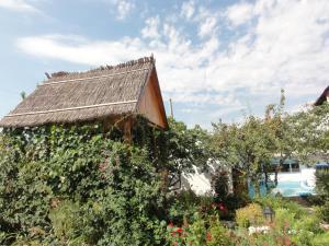 Guest House U Tatyany, Guest houses  Malorechenskoye - big - 45