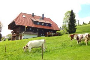 Haus Winterberg