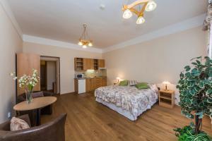 Aparthotel Lublanka, Hotely  Praha - big - 73