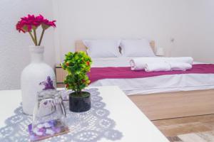 Bed & Breakfast Delikates, Гевгелия